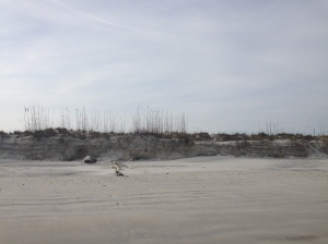 Cool dunes!