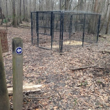 Hog trap and trail markings