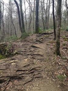 Challenging terrain.