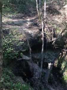 This was what we hiked to see. May not be a waterfall, but it was very interesting and a great warm up hike to the area.