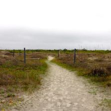 After the shrubs, path to the beach