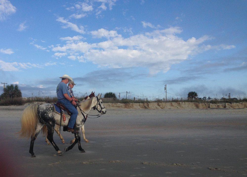 Horses on Myrtle Beach! (6/6)
