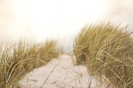 sand-wind