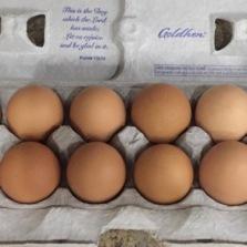 Ah, what is better than fresh eggs?