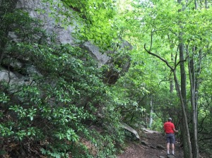 Amazing trail!