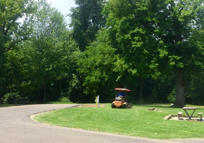 Part of our welcome committee. Mowing the grass before we park.
