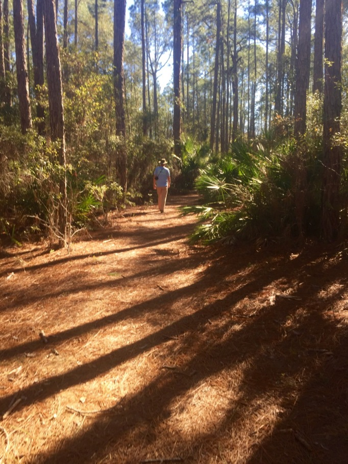 The trails were nice and flat. Some sun and shade!