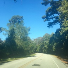 Road to the trail head