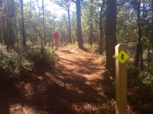 This was a new trail - not on the map but we took it!