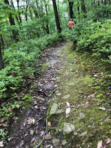 The Ski Slope Trail had a variety of surfaces.