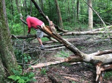 And some trails has their challenges!